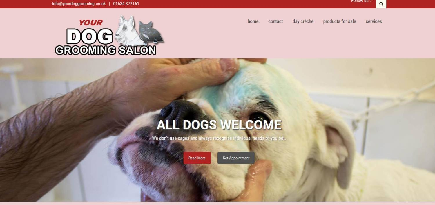 your dog poodle parlour