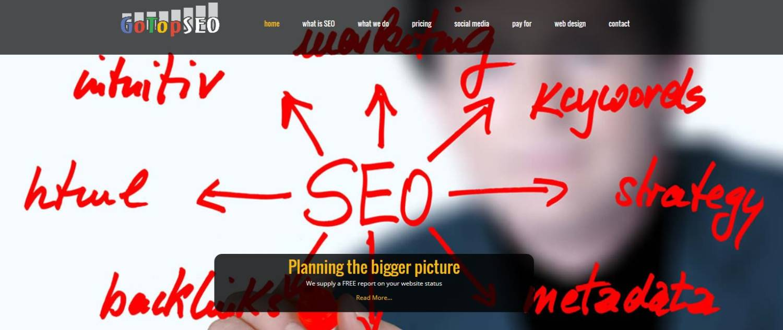 gotopseo website design seo