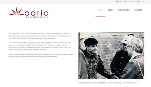 baric consultants new wordpress website