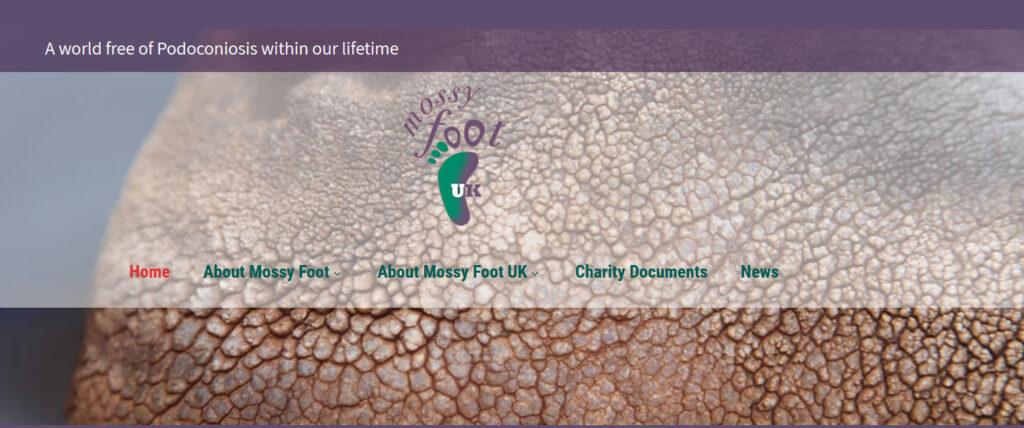 mossy foot charity website design in deal, east kent