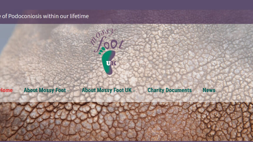 mossy foot charity website design in deal, east kent