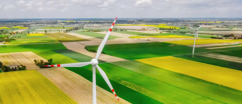 green web designers in kent